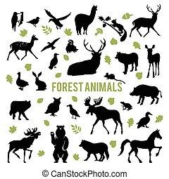 sylwetka, od, przedimek określony przed rzeczownikami, las, animals.