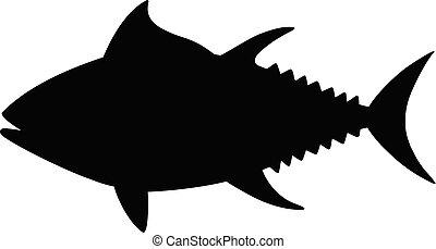 sylwetka, tuńczyk