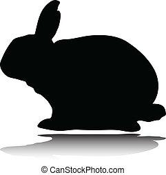 sylwetka, wektor, królik