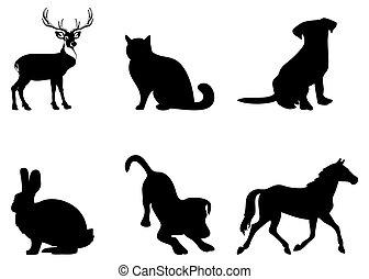 sylwetka, zwierzęta, kot, pies, jeleń, koń, królik