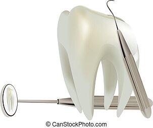 symbol molar tooth