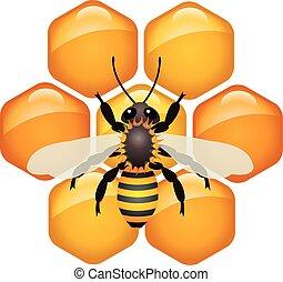 symbol, wektor, honeycells, pracujący, pszczoła