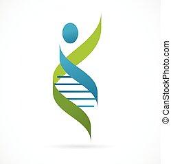 symbole, -, génétique, homme, adn, icône