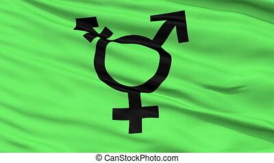 symbole, haut, drapeau ondulant, fin, transgender