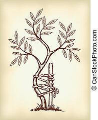 symbole, orthopédie, traumatology.