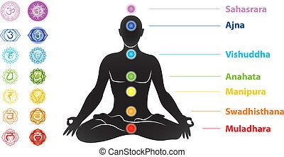 symbole, sieben, silhouette, chakras, mann