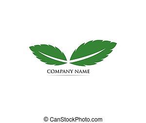 symbole, vecteur, logo, menthe, feuille