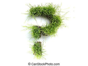 symboler, gjord, av, gräs, -, ifrågasätta markerar