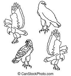 symboles, aigles, tatouage