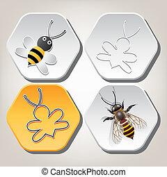 symbolika, honeycell, wektor, pszczoła