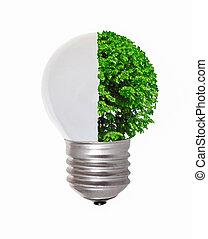 symbolizing, エネルギー, エネルギー, 生態学的, 回復可能, 概念, bio