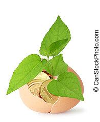 symbolizing, aumento, concetto, finanziario