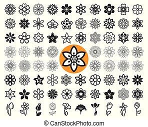 symbols., set, illustration., iconen, guilloche., vector,...