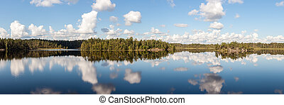 summer lake with reflections