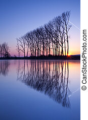 Symmetry reflection on the autumn river