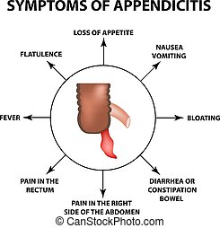 Symptoms of appendicitis. Inflammation of the appendix. Infographics. Vector illustration on isolated background.