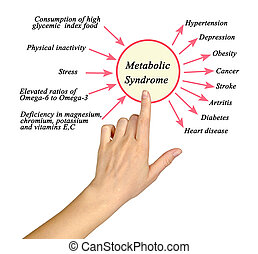 syndrome:, causas, metabolic, consecuences