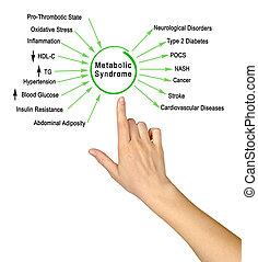 syndrome, metabolic