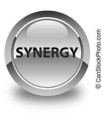 Synergy glossy white round button