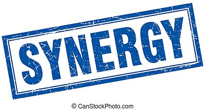 synergy square stamp