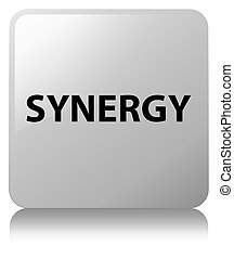Synergy white square button