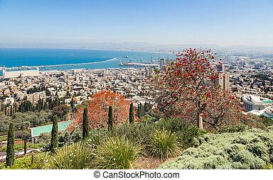 synhåll, av, haifa, israel