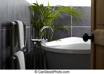 synhåll, av, samtidig, badrum