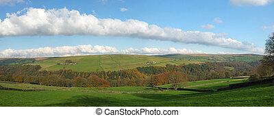 synhåll, höst, klippspetsar, dal, lysande, hardcastle, väst, sheep, omgiven, betning, panorama, botten, bygd, skog, solsken, yorkshire, vid, ängar
