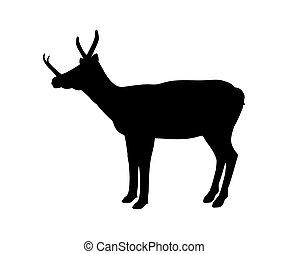 Synthetoceras silhouette extinct mammalian animal. Vector...