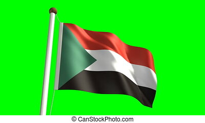 Syria flag video