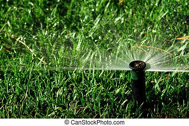 système irrigation, jardin