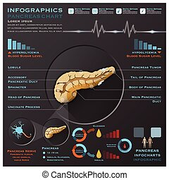 système médical, anatomie, infographic, infochart, pancréas