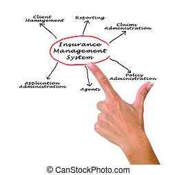 systeem, management, verzekering
