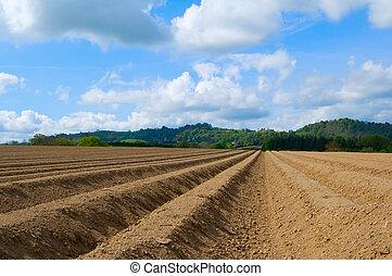 szántás mező