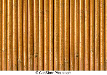 száraz, bambusz, erdő, háttér