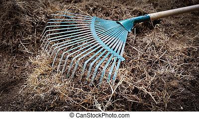 száraz, munka, kert, talaj, gereblye, előkészítés, udvar, lapát, fű