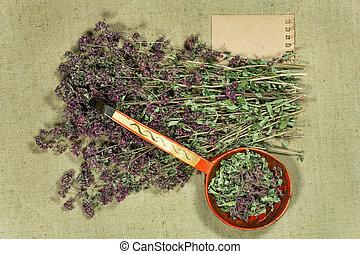 száraz, phytotherapy, herbs., oregano., füvészkönyv, gyógyító, orvosság