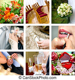 szín, fénykép, esküvő