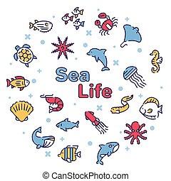 szín, ikon, fogalom, tenger, kerek, élet, vektor, állhatatos, lineáris