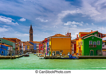 színes, épület, képben látható, a, burano, velence, olaszország
