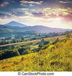 színes, nyár, reggel, alatt, hegyek
