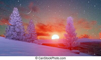 színpadi, napnyugta, felett, havas, tél, erdei fenyők, 4k