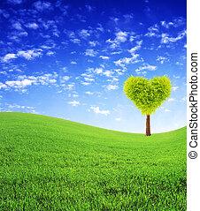 szív alakzat, fa