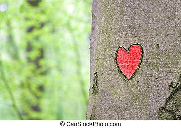 szív, bevésett, fa, piros