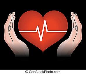 szív, emberi kezezés