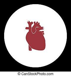 szív, eps10, egyszerű, emberi, piros, ikon