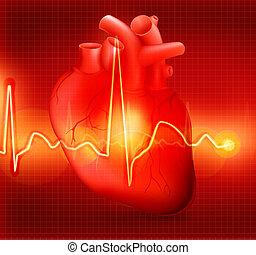 szív, eps10, kardiogram