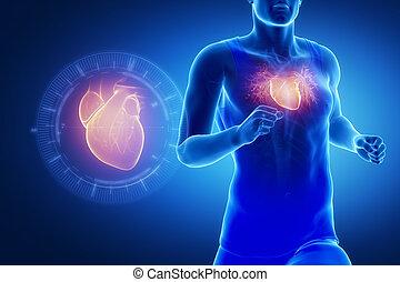 szív, futás, fókuszált, ember