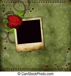 szüret, öreg, fénykép keret, piros rózsa, kártya