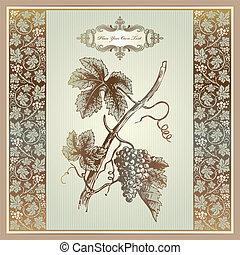 szüret, alapismeretek, szőlő